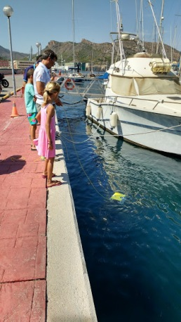 SIBIU testing at sailing living lab