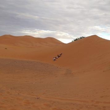 Soledad crew in the desert dunes