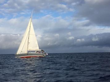 SVSoledad upwinds