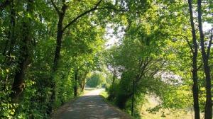 Fall at Divonne les Bains